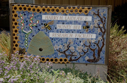Photo: Harry H. Laidlaw Jr. Honey Bee Research Facility